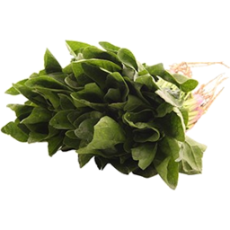 Photo of Spinach Organic