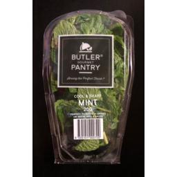 Photo of Butler Pantry Mint Punnet 20gm
