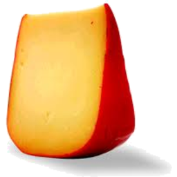 Photo of Gouda Plain
