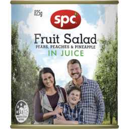 Photo of Spc Fruit Salad Juice 825g