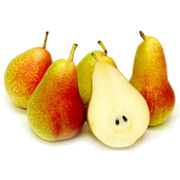 Photo of Corella Pear Large