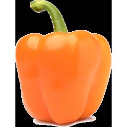 Photo of Capsicum Orange