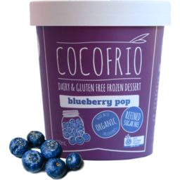Photo of Coco Frio Dairy Free Ice Cream Blueberry 500ml