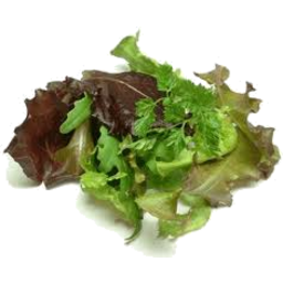 Photo of Salad Mix - 200g