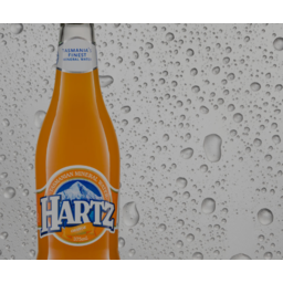 Photo of Hartz Sparkling Orange 375ml
