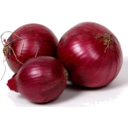 Photo of Onions - Red