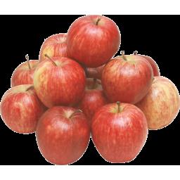 Photo of Apple Sonja