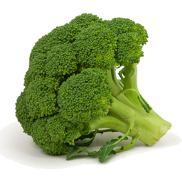 Photo of Broccoli Kg