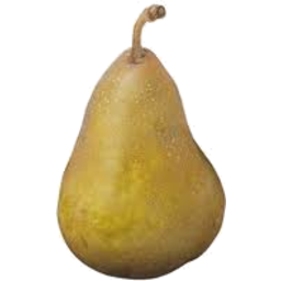 Photo of Pears Buerre Bosc Kg