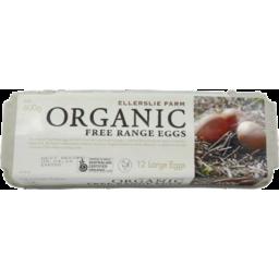Photo of Ellerslie Farm - Eggs - Free Range Organic - 600g