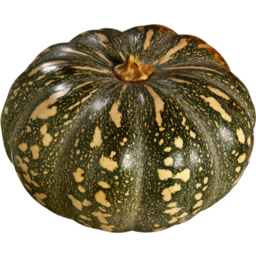 Photo of Pumpkin Japla Kg