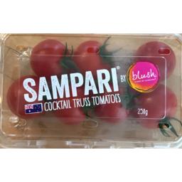 Photo of Tomatoes Blush Punnet Sampari