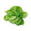 Photo of Baby Spinach Loose