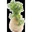 Photo of Celeriac - Cert Org