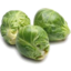 Photo of Brussel Sprout