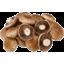 Photo of MUSHROOM SWISS BROWN