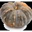 Photo of Pumpkin - Jap