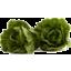 Photo of Cos Lettuce Organic