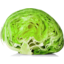 Photo of Lettuce Iceberg Half