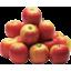 Photo of Apples Champion Kg