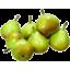 Photo of Pears - WBC