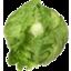 Photo of Lettuce Ice Berg Ea