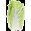 Photo of Wombok Cabbage Whole