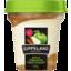 Photo of Gippsland Dairy Apple Cinnamon Twist Yogurt 160g