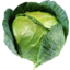 Photo of Cabbage Each
