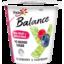 Photo of Yoplait Balance No Added Sugar Blueberry & Raspberry Yoghurt 150g