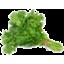 Photo of Organic Coriander