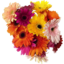 Photo of Flowers Classic Bouquet Med Ea