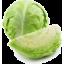 Photo of Cabbage Plain Quarter Ea