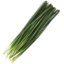 Photo of Thymebank Garlic Chives 10g