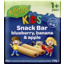 Photo of Raffertys Garden Fruit Snack Bar With Blueberry Banana & Apple 128gm