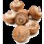 Photo of Mushrooms - Swiss Brown