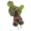 Photo of Beetroot Bunch Ea