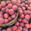 Photo of VAIOLET APRICOTS