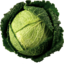 Photo of Savoy Cabbage Whole