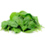 Photo of Coolibah Spinach Leaves 100g