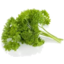 Photo of Butler Herbs Parsley Continental