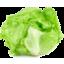 Photo of Fresh Lettuce
