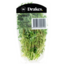 Photo of Drakes Thyme Fresh Herbs 20g