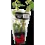 Photo of Superb Herb Living Herb Vietnamese Mint