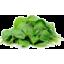 Photo of Baby Spinach - Cert Organic
