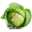 Photo of Cabbage