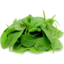Photo of Baby Spinach 100gm