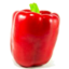 Photo of Capsicum Red Each