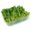Photo of Snowpea Sprouts - Prepacked 100g