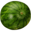 Photo of Watermelon Seedless Whole